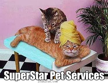 We Treat your Pets like a SuperStar